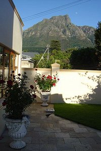 Side garden at Mountain View Guest House - Luxury B&B Guesthouse accommodation for business and leisure in Newlands, Cape Town's Southern Suburbs
